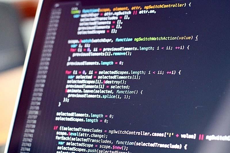 jasa website custom dari nol